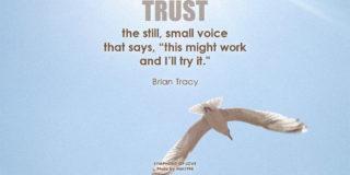 tillid i distance samarbejdet