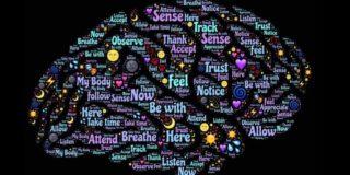 Mindfulness webinar hjernerystelse